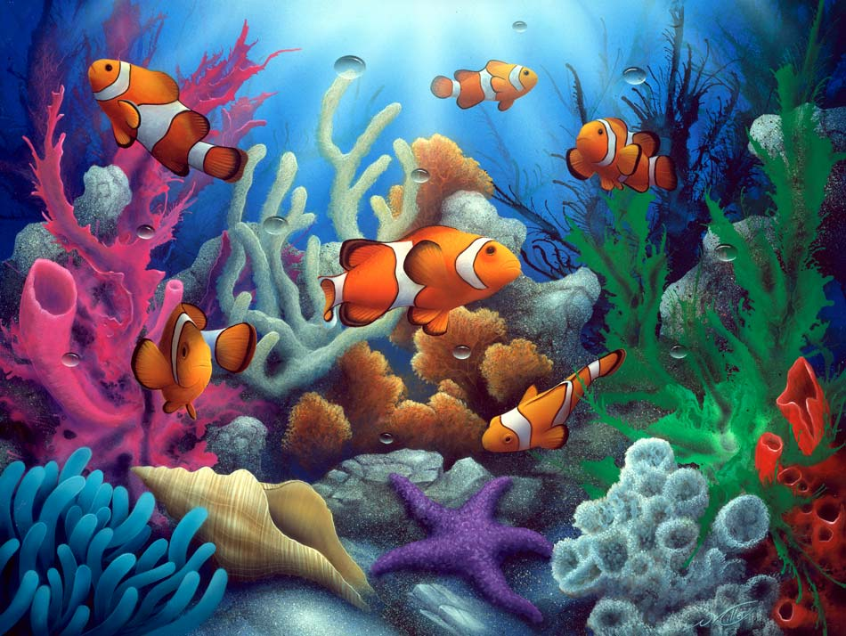 Here come the clowns an under the sea clown fish painting for Dream about fish