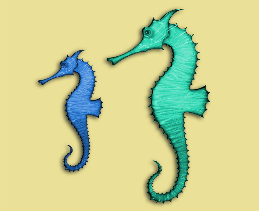 1000  images about Seahorse Images/Ideas on Pinterest | Hold on ...